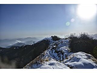 on the way to High Camp ( Mardi Himal Trekking)