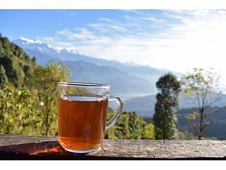 Kagati Chiya (Lemon Tea) at Pothana