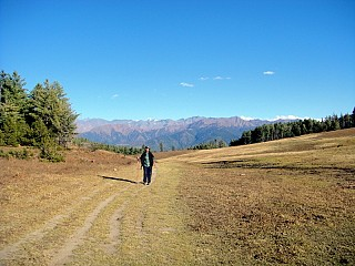 Day 10 | An open pasture at the top. From here it is plesent descend to the Rara Lake