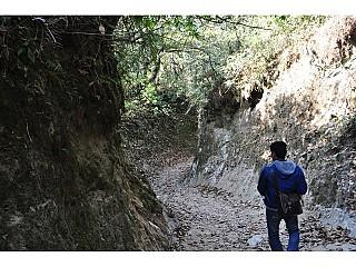 Hiking around Jungle :)