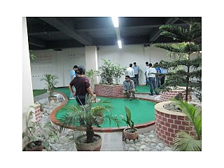 People Busy on playing Mini Golf