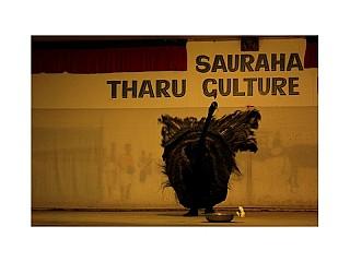 Sauraha Cultural Tharu Dance