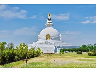 Visit Lumbini