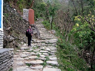 Day 2 | From Tikhedhunga it is a steep one hour climb to Ulleri through stone steps