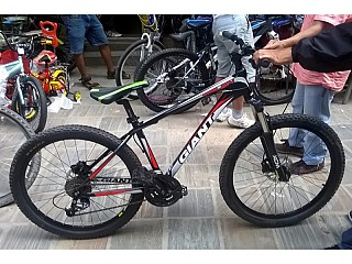 GIANT TALON |