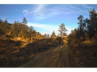 Gravelled Road