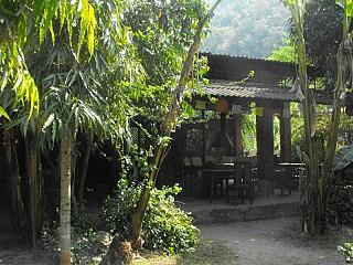 Main Bar,Restaurant