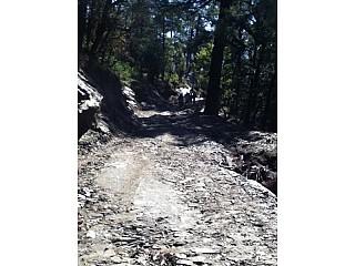 Rough, muddy and rocky way