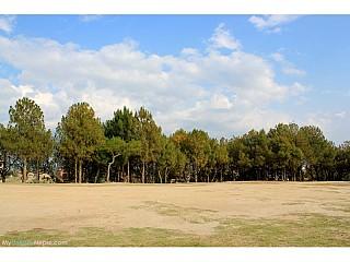 Tokha  Ground