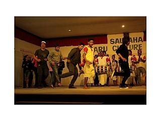 Visitors enjoying Tharu Dance