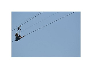 Zip Fly : Dream it Dare it Do it