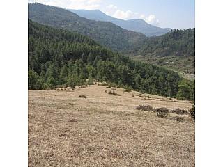 lanscapes of Jiri