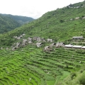 Local settlement at Mahabepather Khola
