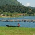 Boating around phewa lake