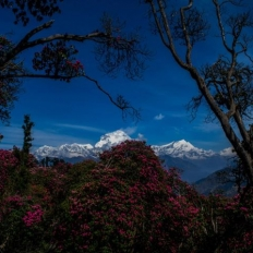 Shot from the Poonhill Nepal