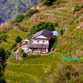 Typical Nepali House